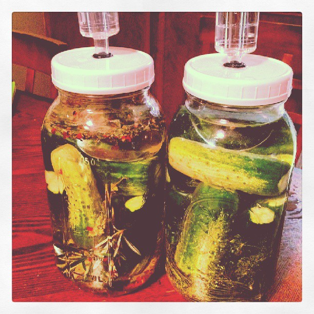 Spicy Italian and Garlic Dill Pickles